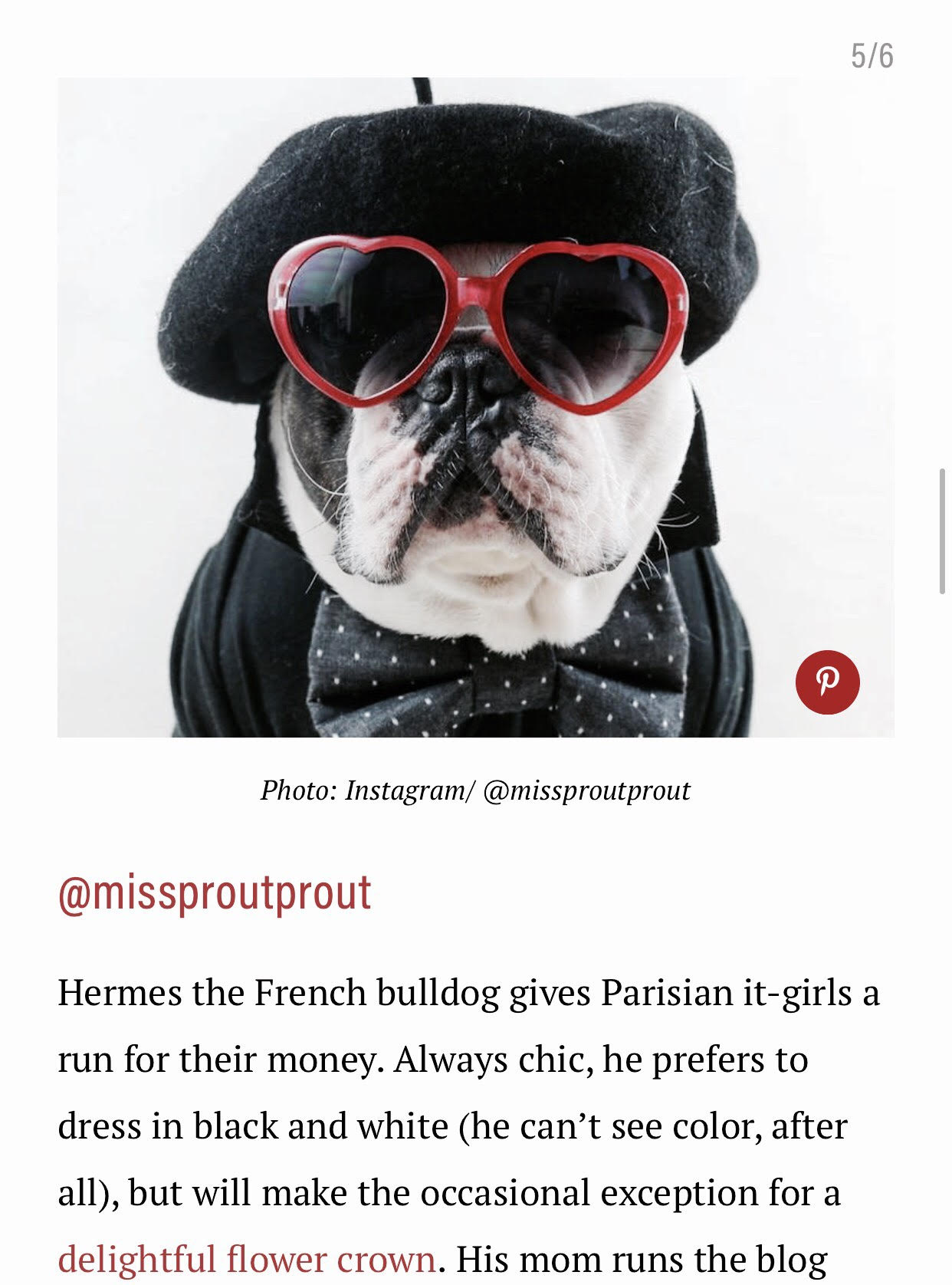 Missproutprout on Well and Good