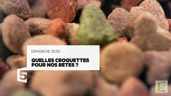 Quelles-Croquettes-pour-nos-betes-08-10-17-France-5_reference