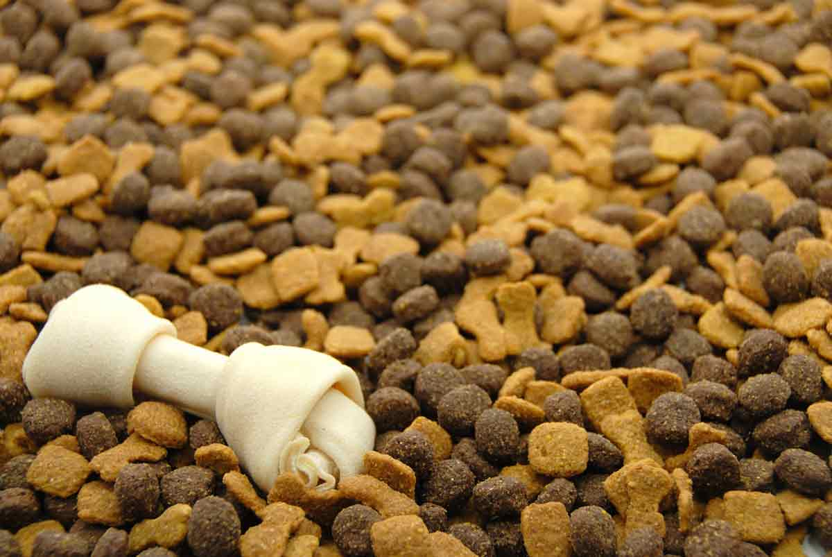 Tips-How-to-Pick-Good-Dog-Food-Dry-Dogs-Foodsml