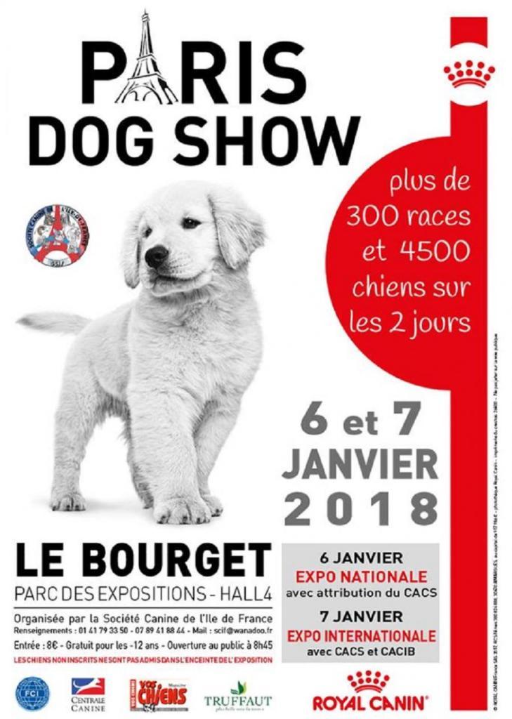 Paris dog show