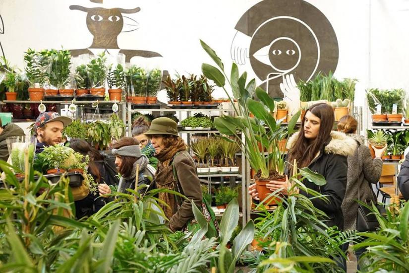 324630-nouvelle-grande-vente-de-plantes-au-cafe-a-a-paris-les-3-et-4-fevrier-2018
