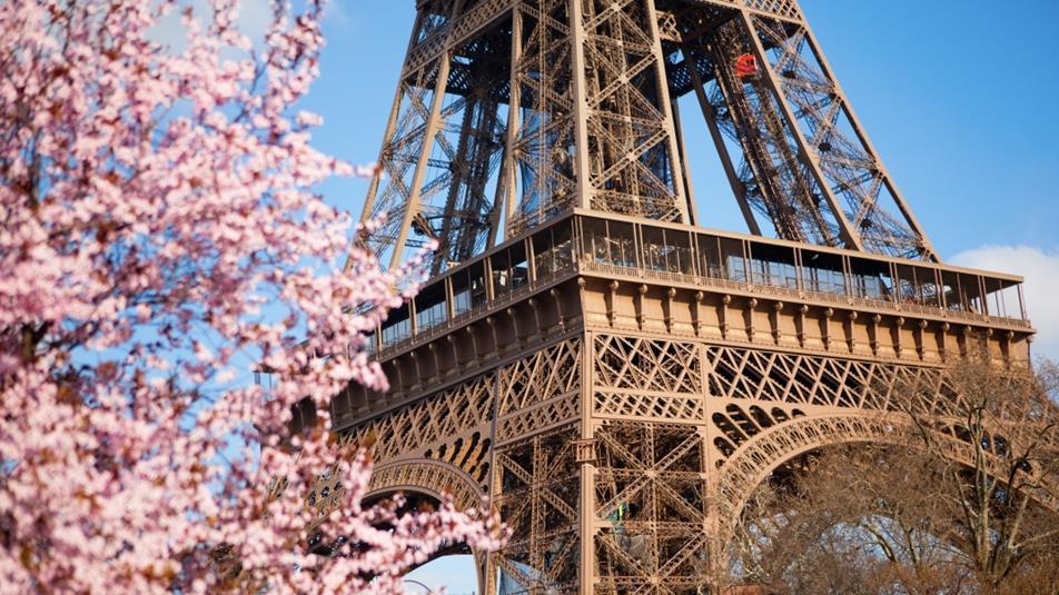 ppr-cherry-blossom-eiffel-tower-1074