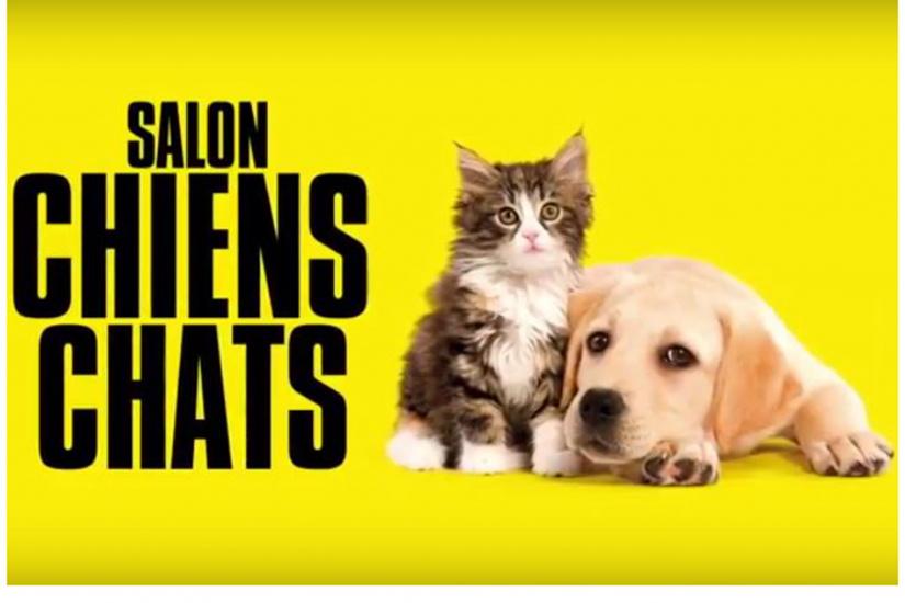 336560-salon-chiens-chats-2018-le-salon-pour-mieux-les-choisir-2